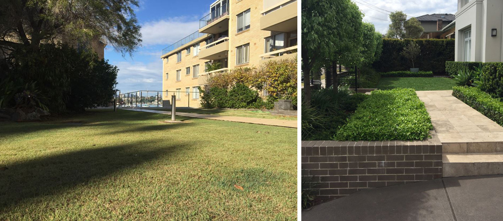 Strata Maintenance Hunters Hill, Garden Maintenance Five Dock, Weeding Balmain, Hedging Concord, Strata Cleaning North West Sydney, Garden Clean Ups Five Dock