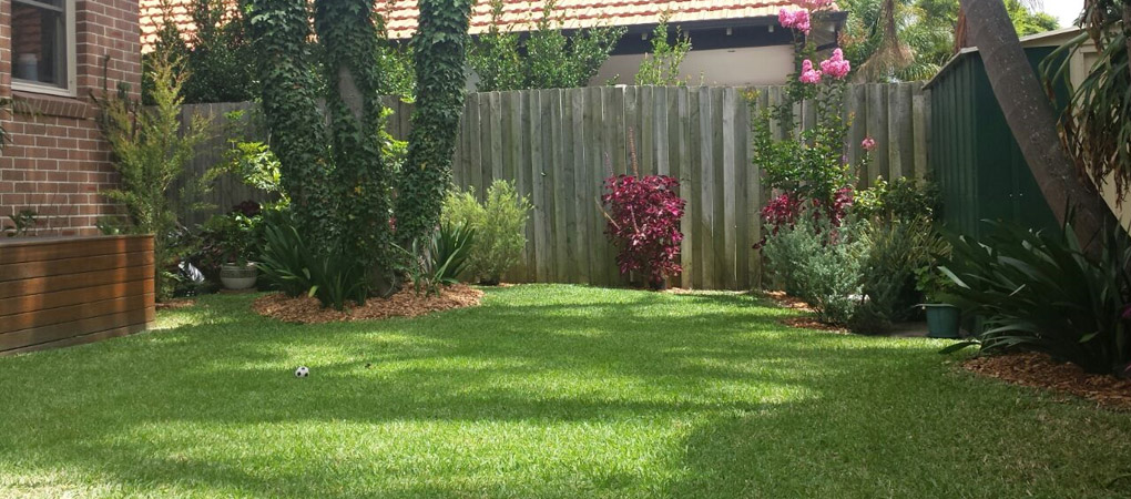 Turf Laying Balmain, Weeding Concord, Hedging Hunters Hill