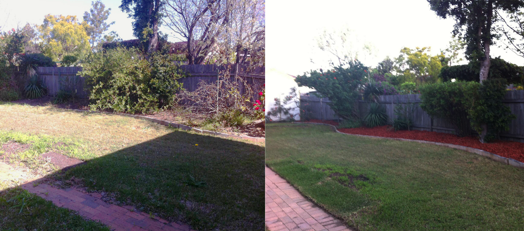 Pruning Hunters Hill, Hedges North West Sydney, Turf Laying Five Dock